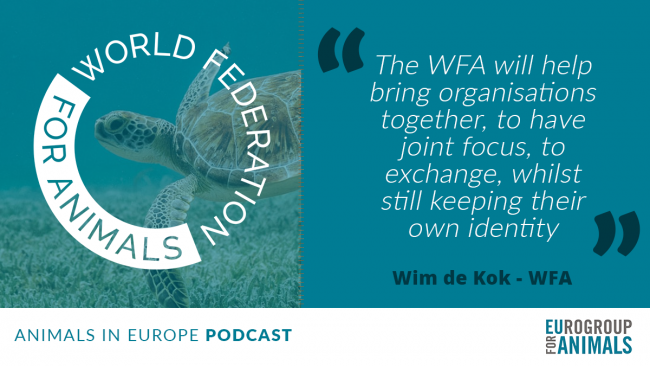 Eurogroup for Animals podcast episode: Launch of the World Federation for Animals