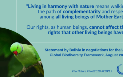 Creating a Global Biodiversity Framework plan that works: Where we are and where we're going
