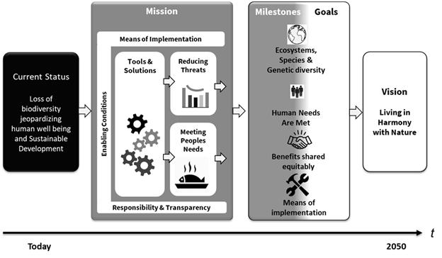 Draft goals of the Global Biodiversity Framework.