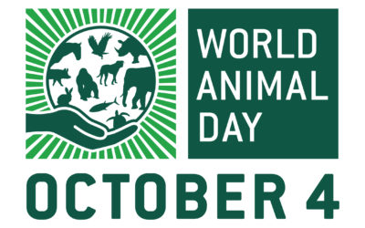 The case for an international day to recognise animals